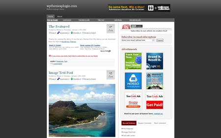 blogging for money - wpthemesplugin